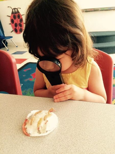 preschool experiment